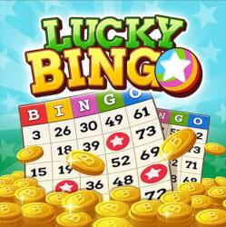 Lucky bingo app